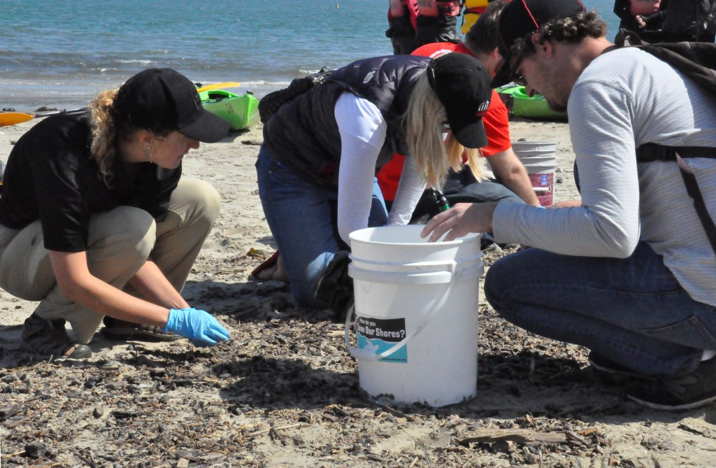 Beach Cleanup for Earth Day