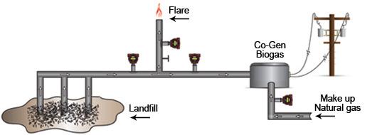 Capturing Biogas